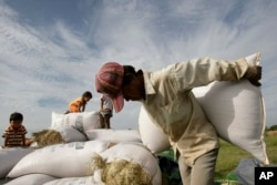 FILE- A man carries a sack of rice to dry them under sunlight at a rice farm during the harvest at Kork Banteay village, Kandal province, some 30 kilometers (18 miles) east of Phnom Penh, Cambodia.