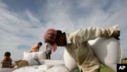 A man carries a sack of rices to dry under sunlight at a rice farm, as children play in the background, Kork Banteay village, Kandal province, Cambodia, Friday, June 22, 2012. (AP Photo/Heng Sinith)