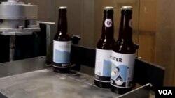Flaše piva napravljenog od kišnice
