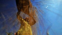 ذخیره گندم در هند سیر صعودی نشان می دهد