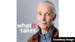 What it Takes - Jane Goodall