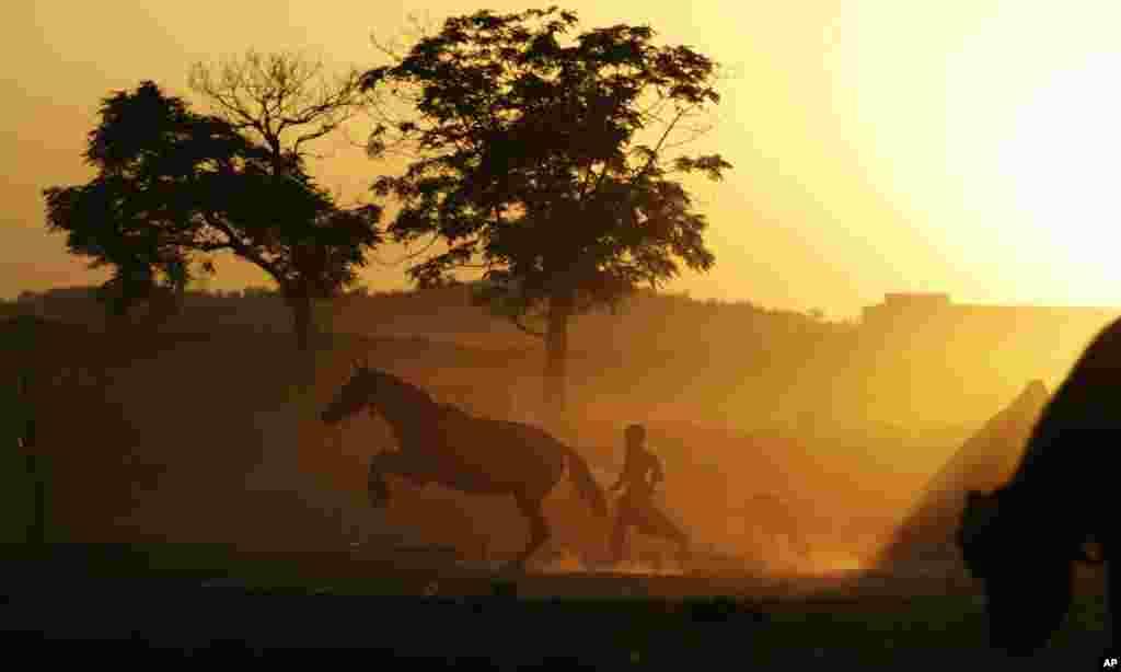 Dječak, Pakistanac iz okoline Islamabada, u igri sa njegovim konjem.