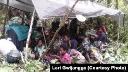 Masyarakat Nduga bersembunyi di hutan selama TNI-Polri melakukan pengejaran kelompok Egianus Kogoya, di Mapenduma, Kabupaten Nduga, Provinsi Papua, Desember 2018. (Courtesy Photo: Leri Gwijangge)