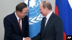 Sekjen PBB Ban Ki-moon (kiri) bertemu dengan Presiden Rusia Vladimir Putin di kota Sochi, Rusia (17/5).