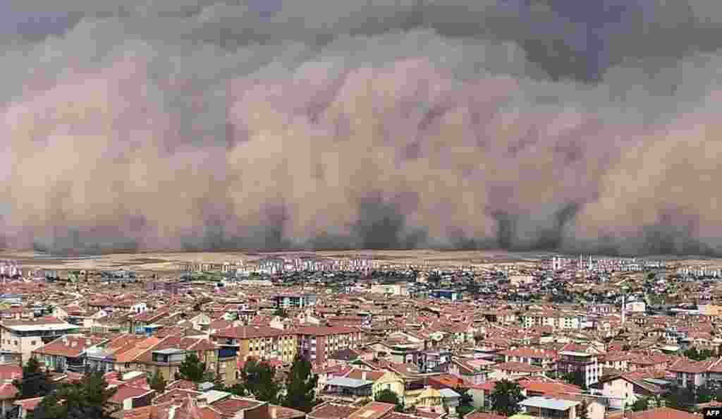 Ankarada qum qağırğası