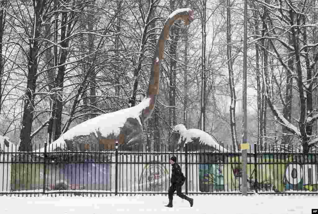 مجسمههای حیوانات دوره مزوزوئیک(میانهزیستی) در پارکی در سن پترزبورگ روسیه