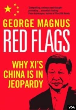 马格努斯撰写的《警讯:为什么习近平的中国处于危险之中》。