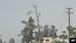 افغانستان: تشدد کے مختلف واقعات میں سات افراد ہلاک