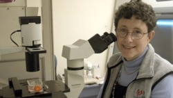 Dr. Joanne Kurtzberg is director of the Pediatric Bone Marrow and Stem Cell Transplant Program at Duke University Medical Center in Durham, North Carolina