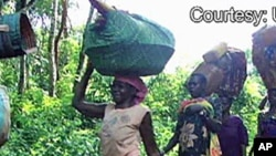 Des déplacés internes en RDC (AP)