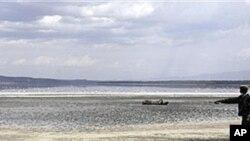 가뭄으로 호수가에서 죽은 버팔로