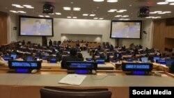 دوید کی، گزارشگر آزادی بیان سازمان ملل، گزارش خود را به کمیته سوم مجمع عمومی سازمان ملل ارائه داد.