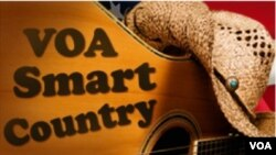 VOA Smart Country