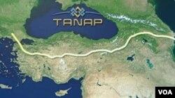 TANAP layihısi