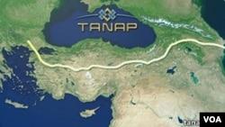 Güney Gaz Koridoru'nun en önemli ayaklarından olan Trans Anadolu Doğalgaz Boru Hattı (TANAP), 1850 kilometre uzunluğunda olacak.