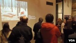 参观者观看关于一处集体墓葬地的图片。(美国之音白桦拍摄)