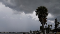 """熱帶風暴""""艾爾莎""""逼近佛羅里達西海岸"""