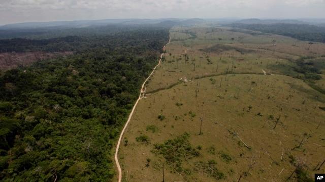 Bức hình tư liệu này cho thấy một khu vực rừng Amazon bị chặt phá, khai thác gần Novo Progresso ở bang Para phía bắc Brazil.