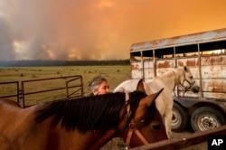 Dawn Garofalo meletakkan kuda-kudanya di kandang sementara di tepi Danau Almanor saat Api Dixie mendekati Chester, California, Selasa, 3 Agustus 2021.