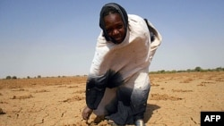 Image released by Oxfam shows a women pointing at the dry land in Oud Guedara. Early indicators point to a likely food crisis in 2012, with people at particularly high risk in Mauritania, Niger, Burkina Faso, Mali and Chad.