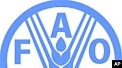 FAO, 동아시아 구제역 긴급회의 소집, 북한도 초청