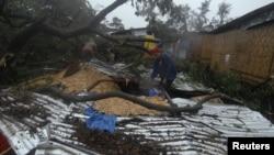 """""""寶霞""""颱風吹襲菲律賓﹐大樹倒塌砸毀房屋"""