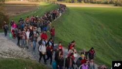 Migrantes caminan en un dique después de cruzar de Croacia hacia Eslovenia, el martes, 20 de octubre de 2015.