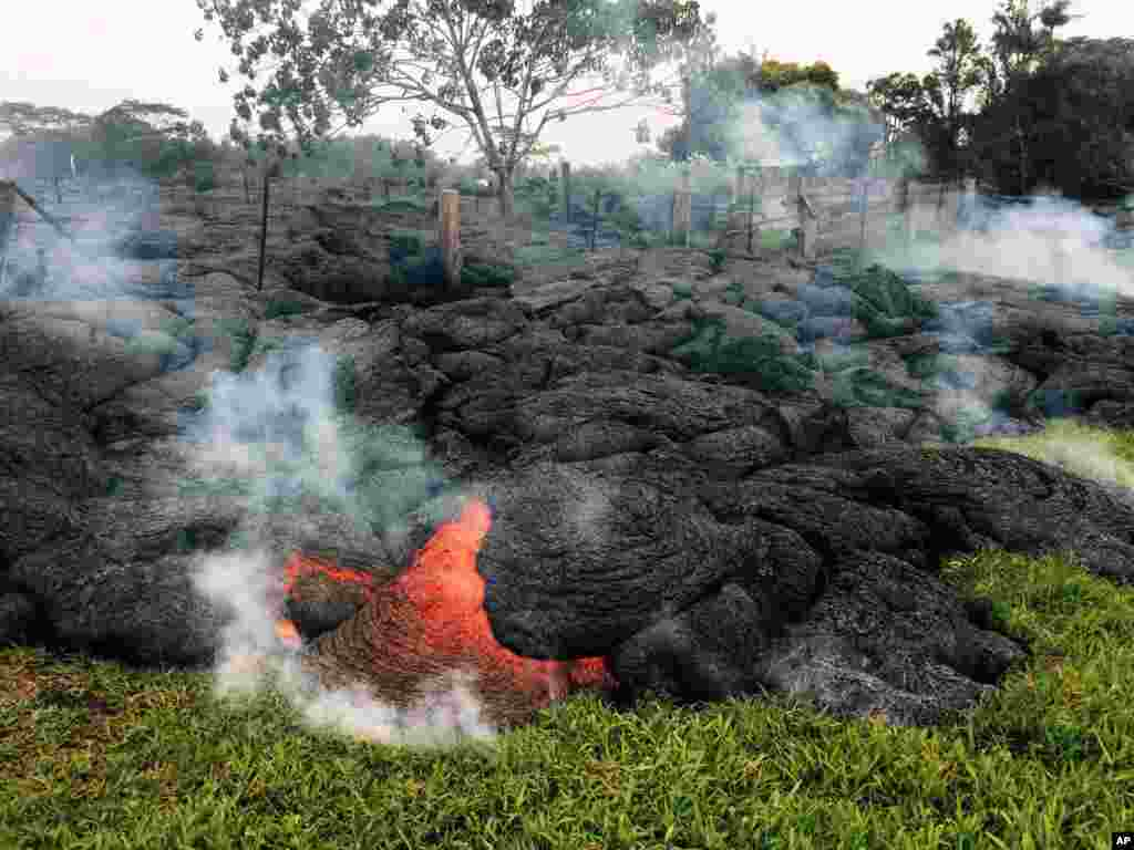 This Oct. 26, 2014 photo provided by the U.S. Geological Survey shows the lava flow from an eruption that began on the June 27. The volcano remains active and the lava continues to advance towards the northeast, threatening the town of Pahoa on the Big Island of Hawaii. Dozens of residents in this rural area of Hawaii were placed on alert as flowing lava continued to advance.