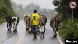 El tema agrario es uno de los puntos de agenda que negocian la guerrilla y el Gobierno colombianos.
