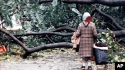 FILE - A woman finds her passage blocked by fallen trees in London, Oct. 16, 1987, after overnight storms with hurricane-force winds caused widespread damage. On the 30th anniversary of the storm, Oct. 16, 2017, Hurricane Ophelia is expected to take aim at Britain and Ireland.