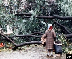 FILE - A woman finds her passage blocked by fallen trees in London, Oct. 16, 1987, after overnight storms with hurricane-force winds caused widespread damage.