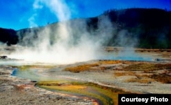 黄石公园游人如织(Yellowstone NP Courtesy Photo)