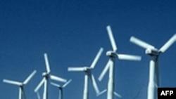 «Зеленые» технологии спасают от безработицы