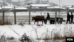 Soldados de Corea del Norte vigilan una de las zonas fronterizas.
