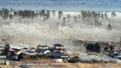 در زمین لرزه و سونامی در ژاپن صدها تن کشته شدند