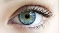 Đau nhức trong mắt