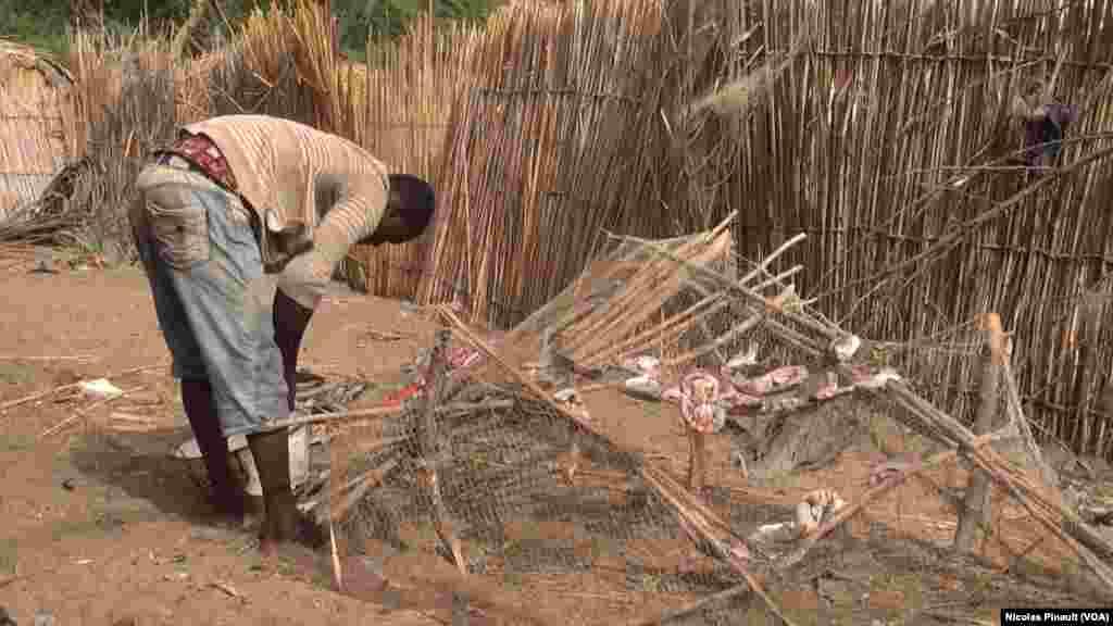 Un jeune pêcheur nigérian fait sécher ses poissons dans le village de Tagal, Tchad, le 24 avril 2017 (VOA / Nicolas Pinault)