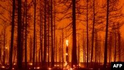 Cháy rừng ở California, ngày 3/8/2021.