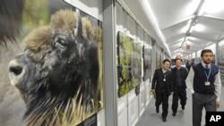 Delegados a las negociaciones sobre cambio climático caminan en un pasillo adornado con fotos del medio ambiente.