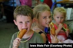 Children at the Iowa State Fair enjoy corn dogs on a stick.
