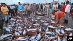 Para nelayan Indonesia menjual ikan hasil tangkapan di Lampulo, Banda Aceh, Aceh (foto: ilustrasi).