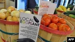 E ardhmja e ekonomive të vogla bujqësore në Shtetet e Bashkuara