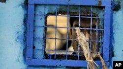 Prison Torture