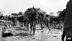 Italo-Abyssinian War 1935