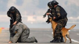 Members of the Turkish police special unit handle a trained dog as they arrest a man during an anti-terror drill as part of a security exercise in western Turkey.