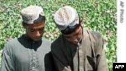 باوچر: میزان قاچاق مواد مخدر در جنوب افغانستان روز بروز کاهش می يابد