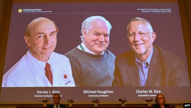 Ba nhà khoa học đoạt giải Nobel Y học năm 2020 cho công trình xác định virus viêm gan C.
