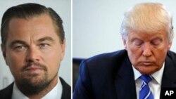 El actor tuvo un encuentro de 90 minutos con el magnate en la Trump Tower en Nueva York y le entregó una copia de su documental. El presidente electo de los Estados Unidos prometió mirarlo y sugirió otro encuentro para el próximo mes.