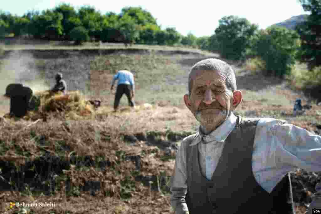 کشاورزان در سیاهکل، استان گیلان عکس: بهنام صالحی(ارسالی شما)