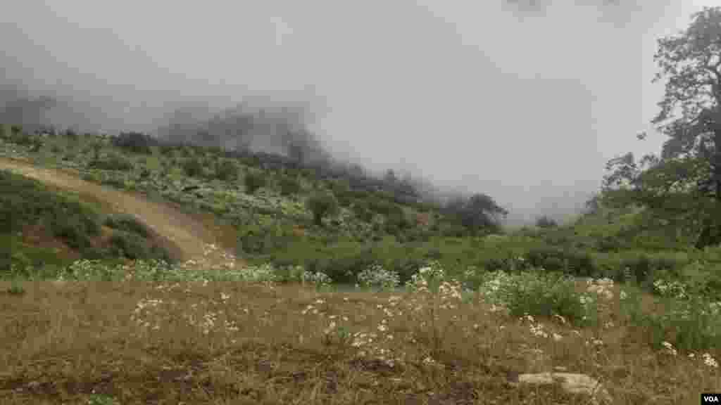 ارتفاعات ییلاق در شهر ماسال، گیلان عکس: علی.م ( ارسالی از شما)